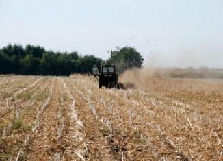Campania agricolă de toamna