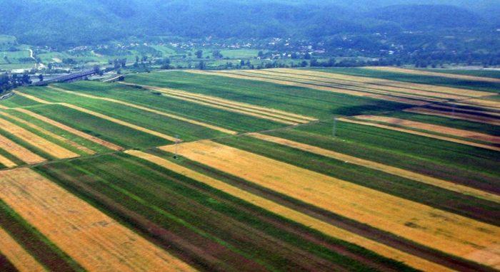 agricultura moldovenească